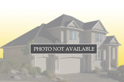 2239 BRANDING IRON COURT, TRINITY, Single-Family Home,  for sale, Mike  Vannes,  Florida Luxury Realty